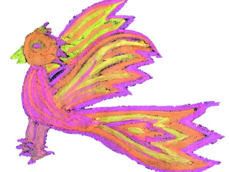 Der Feuervogel. Bild von Laura, Grundschule Emmering